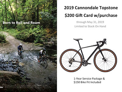 2019 Cannondale Topstone