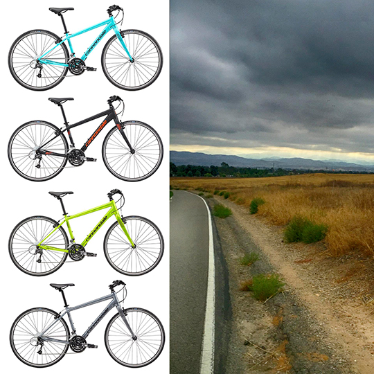 Welcome to Irvine Bicycles Online
